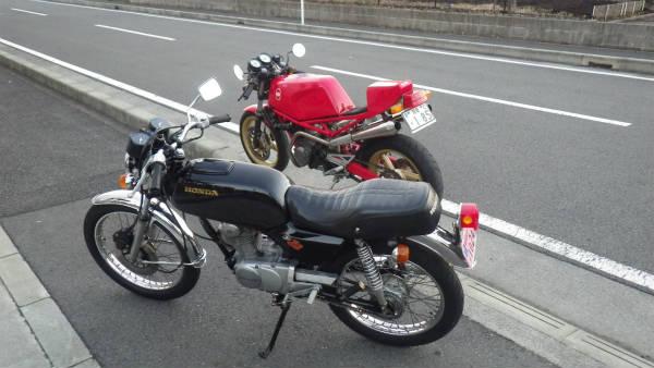 IMGP3030